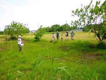P1130409tanbo_kukaku.JPG