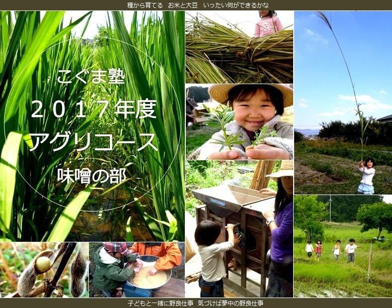 17agri_miso.jpg