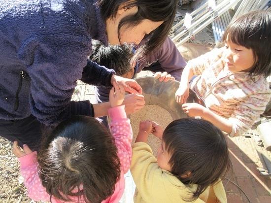 IMG_4646miso_okome_seimai.JPG