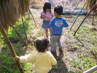 P1090635koguma_kids.JPG